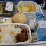 Vegan Airplane food KLM