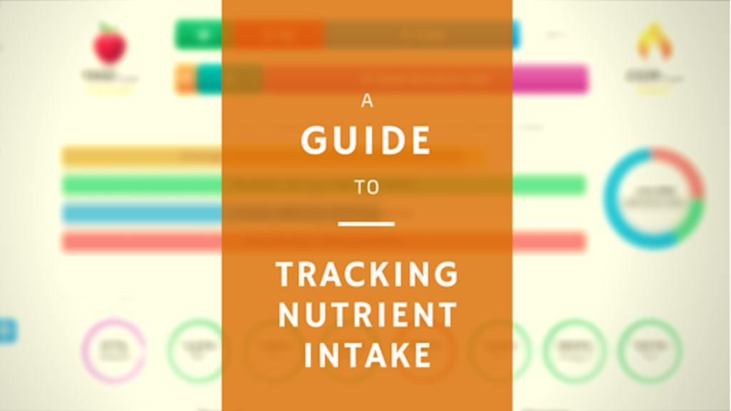 A guide to tracking nutrients