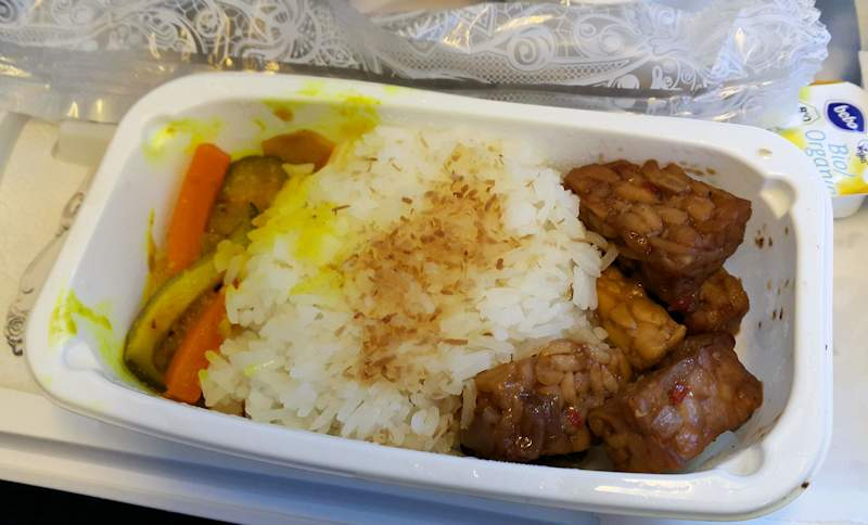 KLM vegan lunch Tempeh Amsterdam to Cape Town