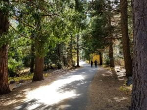 Path leading to Emerald Bay