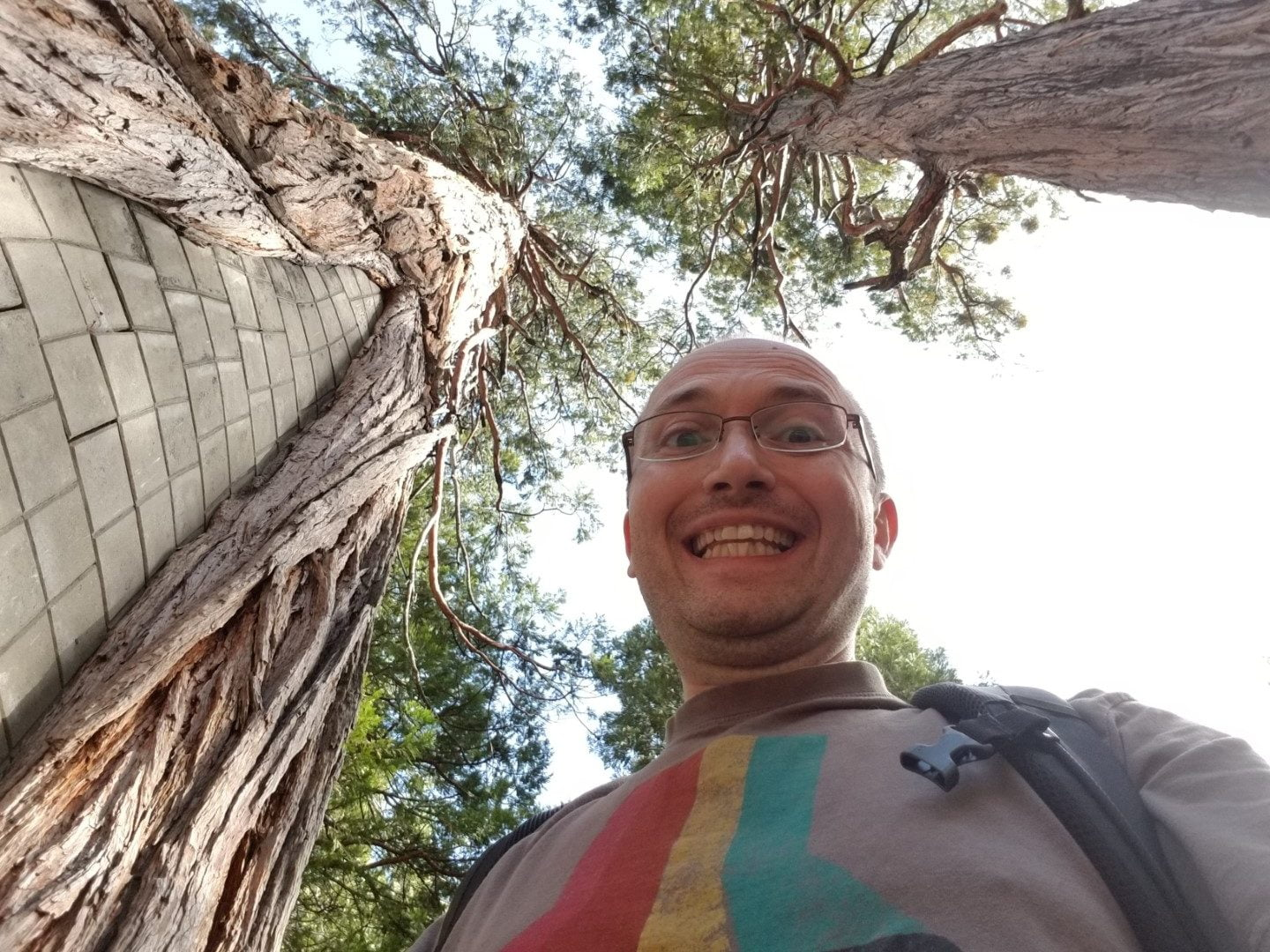 Selfie with Trees