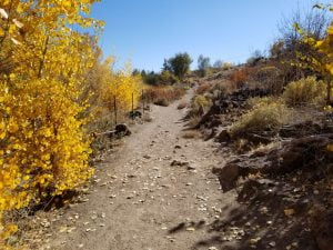 Trails near Barley Ranch